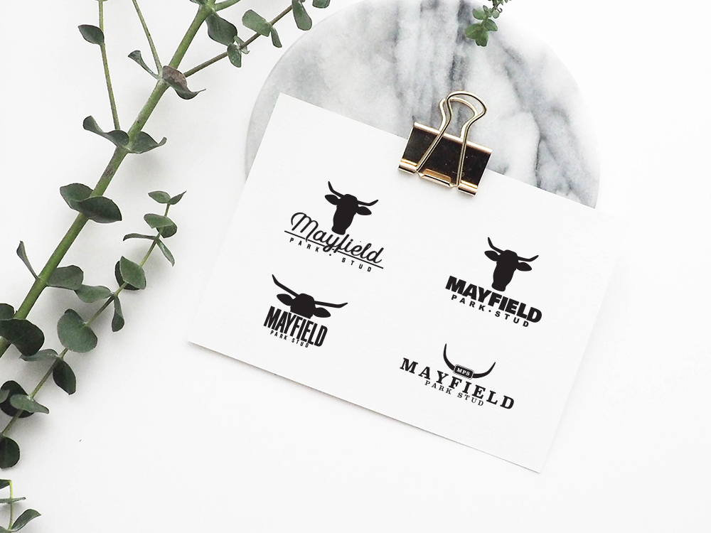 Mayfield Park Stud Branding - Photo Credit: Helena Hertz